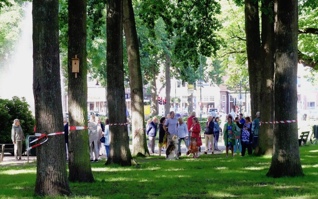 Actie Liberaal Laren tegen bomenmoord op de Brink