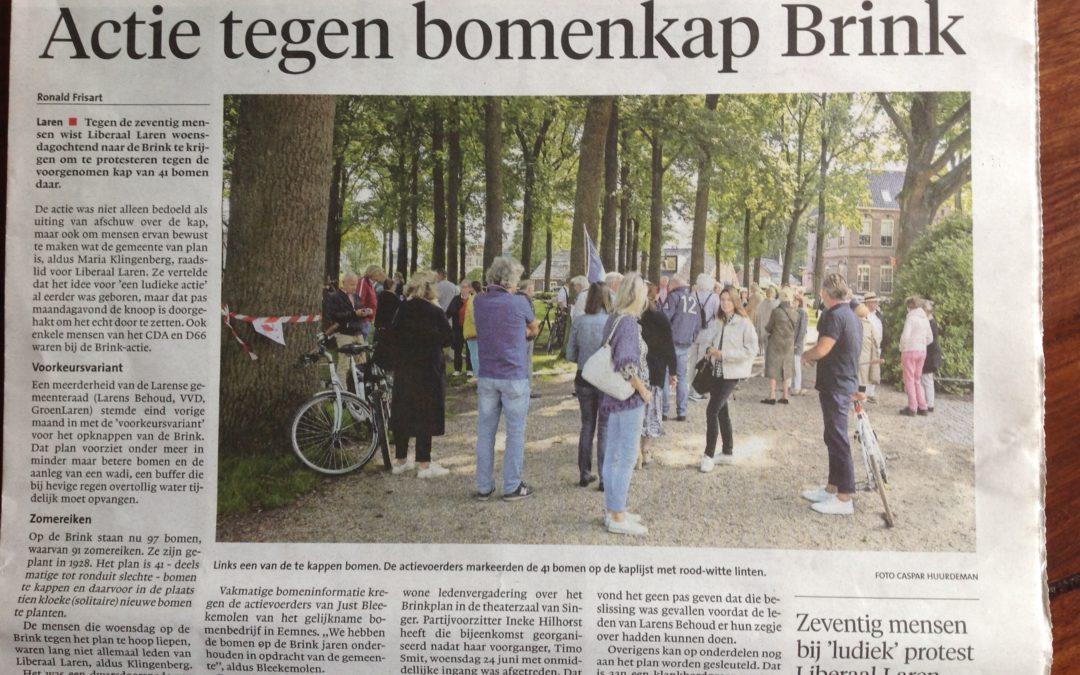 Actie tegen geplande bomenkap Brink