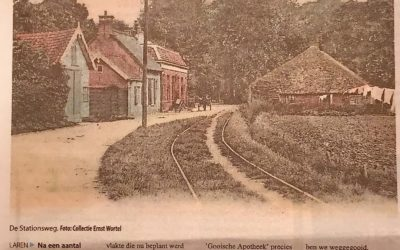 De Brink in 1900 met vele hoge iepen